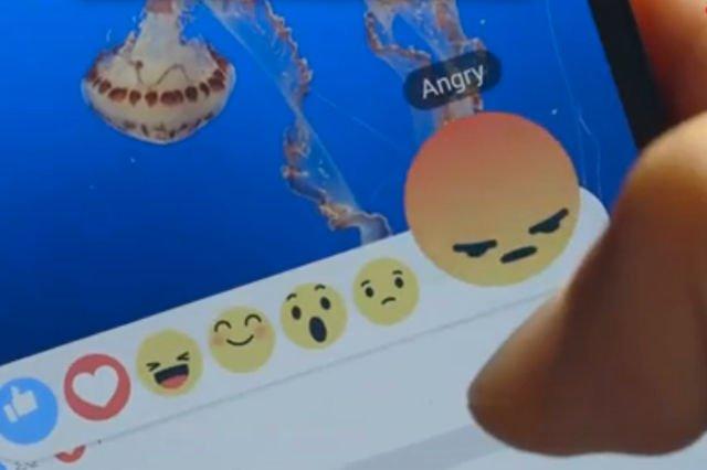 4e054f493d752a Niemiecka prokuratura interweniuje w sprawie mowy nienawiści na Facebooku.