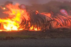 Prezydent Kenii nakazał spalenie stosu kości, kłów i rogów rzadkich zwierząt. 170 mln dolarów poszło z dymem