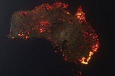 Część informacji, które trafiają do sieci w związku z pożarami w Australii, nie ma nic wspólnego z dramatem, który tam się dzieje.