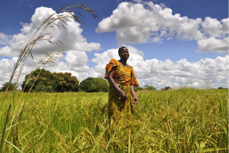 Zrównoważony rozwój to klucz do świata wolnego od przepaści między mieszkańcami Ziemi
