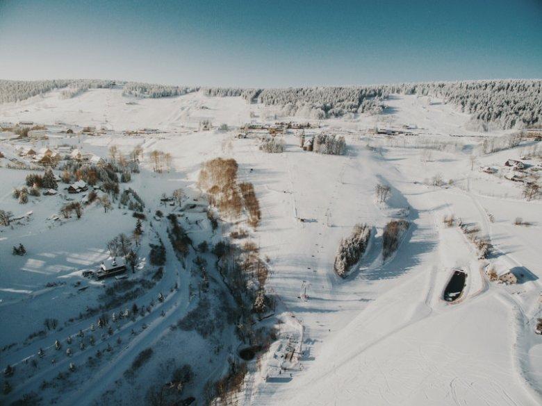 Zieleniec zimą