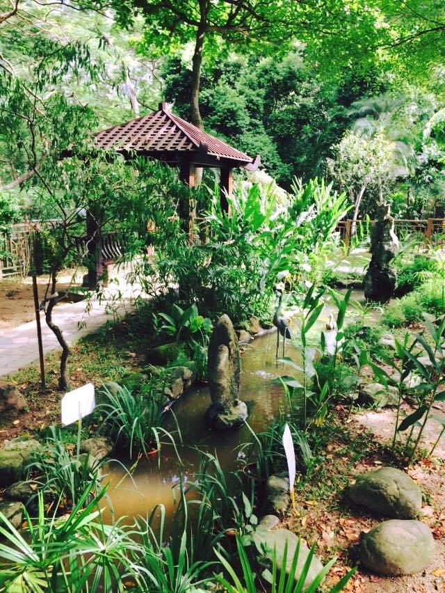Ogród zoologiczny w samym centrum Hong Kongu