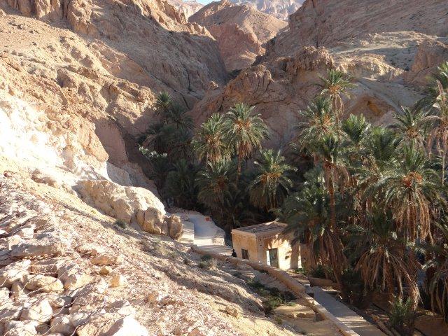 Oaza Chebika w pobliżu granicy tunezyjsko-algierskiej. Miejsce odpoczynku na środku pustyni.