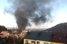 Prawdopodobną przyczyną pożaru hotelu był śmietnik.