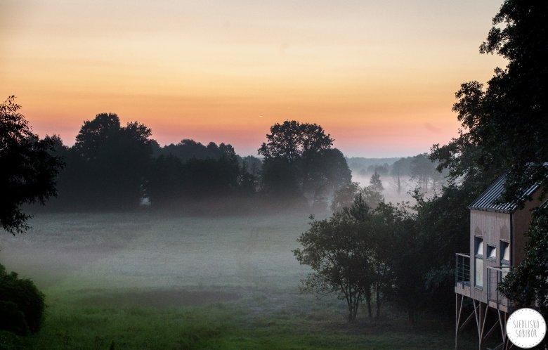 Nowe domki wśród gałęzi drzew w Siedlisku Sobibór