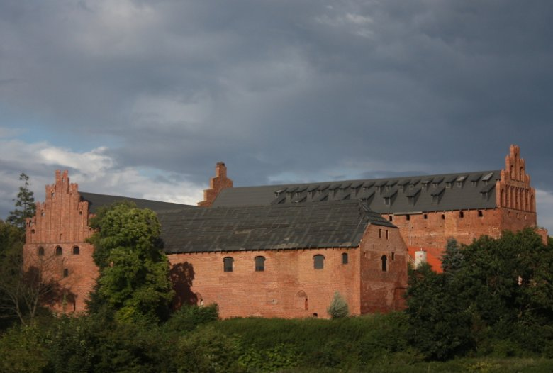Zarośnięty zamek w Barcianach