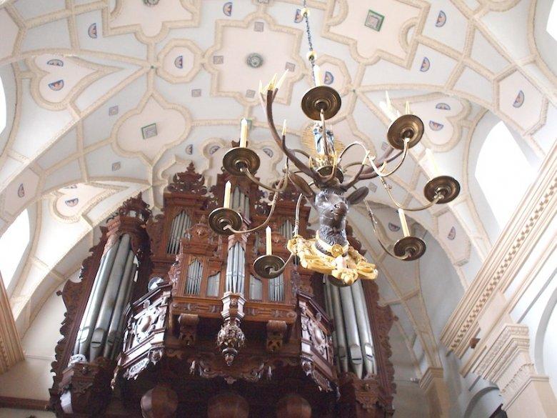 Jeleń z Fary. W tle najstarsze organy w Polsce