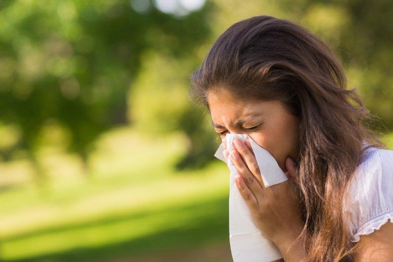 W czerwcu pylą m.in. [url=http://tinyurl.com/pcxrr5u]szczaw i pokrzywa.[/url]
