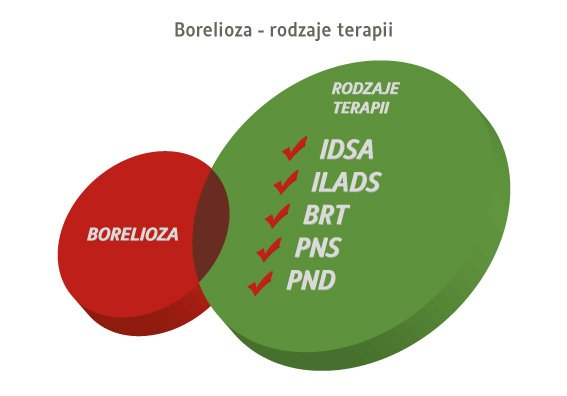 borelioza - rodzaje terapii