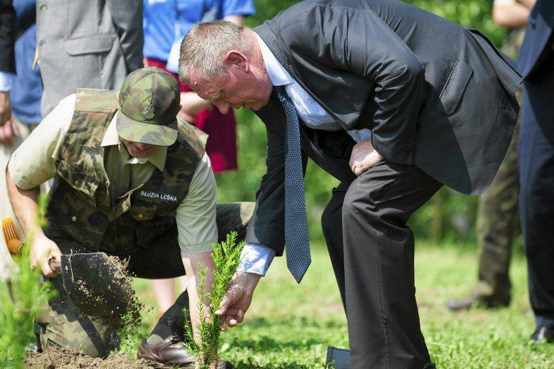 Minister Jan Szyszko sprawuje kontrolę nad Lasami Państwowymi