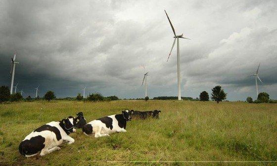 Elektrownie wiatrowe to także zyski dla lokalnych samorządów z tytułu podatków.