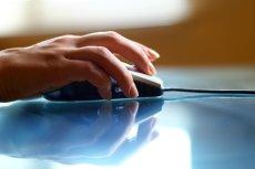 Internetowe wyszukiwarki i porównywarki usług, takie jak Pan Wybierak czy Prąd na klik, pozwalają w łatwy i szybki sposób zamawiać określone usługi