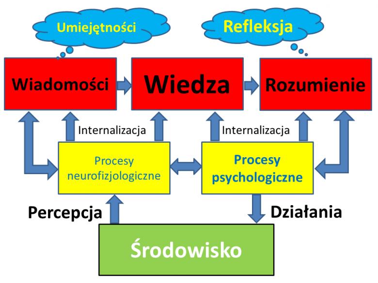Schemat zagadnień badanych przez kognitywistykę