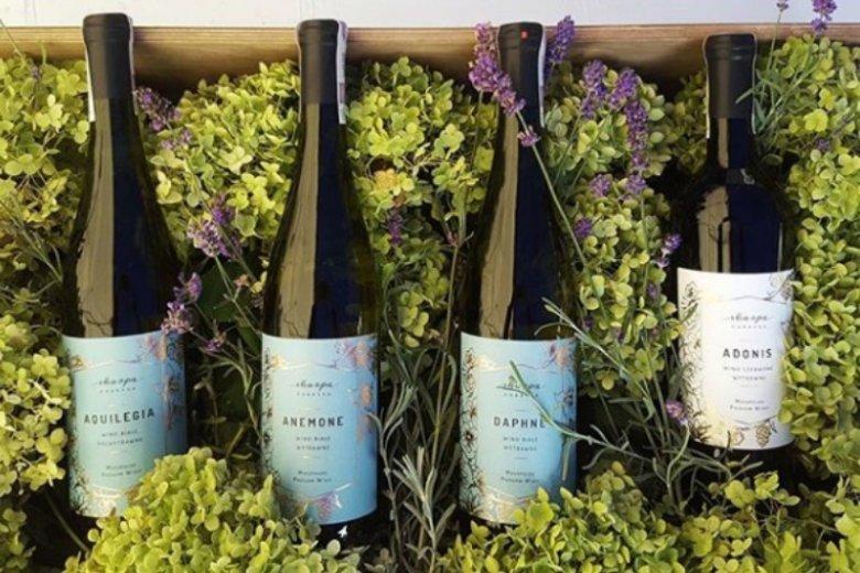 Wina ze Skarpy Dobrskiej to nie tylko smak, ale również wyjątkowo piękne etykiety