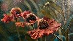 """Fragment zdjęcia """"Summer Rain"""", nagrodzonego IGPOTY w kategorii """"Beauty of plants"""""""