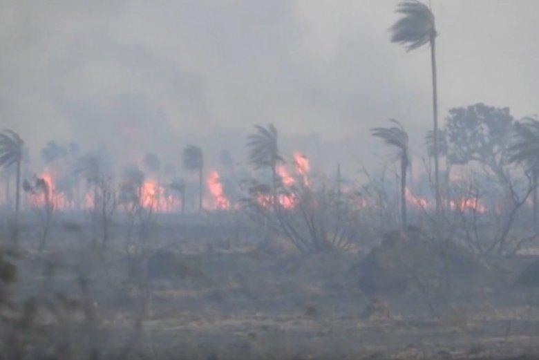 Pożary od trzech tygodni szaleją w Brazylii, przeniosły się do Boliwii.