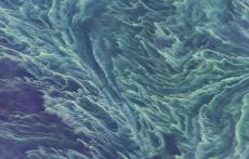Zdjęcia Bałtyku zrobione przez NASA robiąwrażenie.