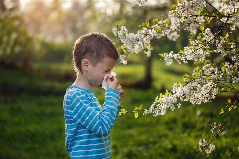Alergię trzeba leczyć, bo może doprowadzić do ciężkiej choroby jaką jest astma.