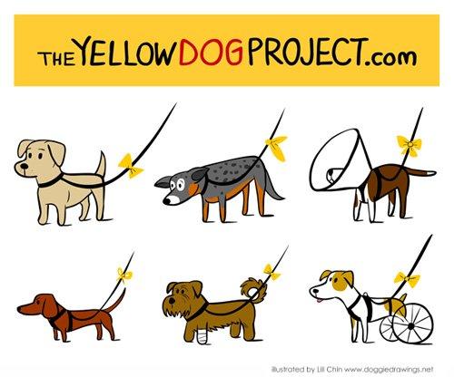 Udział w akcji potwierdziło dotychczas milion właścicieli psów z całego świata.