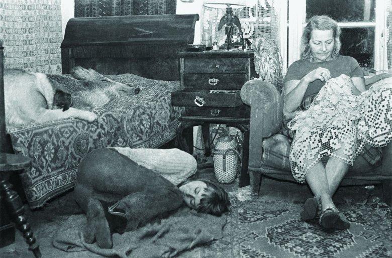 Elżbieta Kossak, matka Simony, lubiła życie na Dziedzince. Przez dwa lata kursowała między Krakowem a Białowieżą.