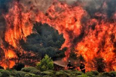 Pożary w Grecji są opanowane, ale może ich przybywać – taką informację podał grecki minister.