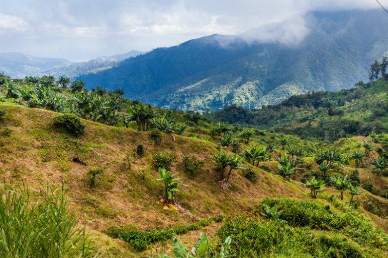 Zbocza Błękitnych Gór na Jamajce