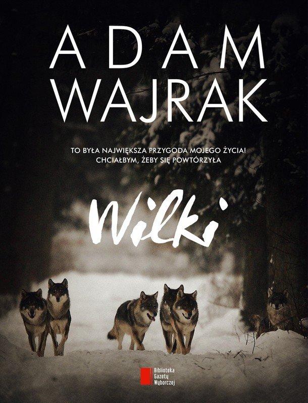 """""""Wilki"""" Adama Wajraka to wciągająca historia znajomości dziennikarza z wilkami. Po tej lekturze nie sposób wilków nie lubić!"""