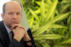 Konstanty Radziwiłł nie wyklucza dopuszczenia leczniczej marihuany w Polsce.
