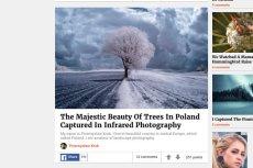 Zdjęcia Polaka zostały docenione przez BoredPanda.com.