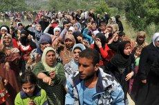 Węgrzy powstrzymują falę uchodźców, a Częstochowianie ich za to chwalą