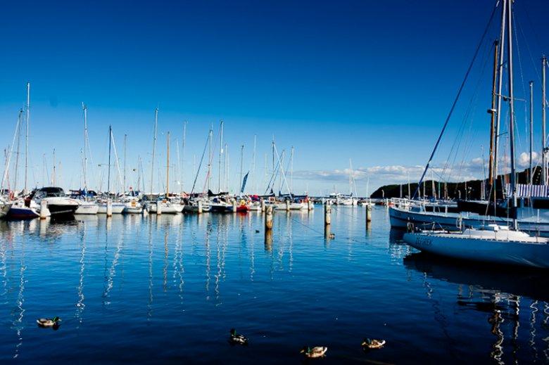 Marina w Gdyni cieszy się niesłabnąca popularnością