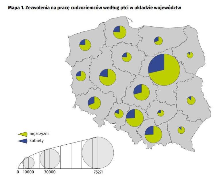"""Mapa opublikowana w artykule na Wykopie – """"Polityka migracyjna rządu PiS zrobi z Polaków bezdzietnych kawalerów""""."""