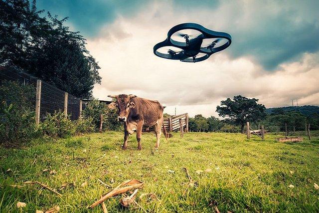 Drony mogą ingerować w naszą prywatność. Dlatego warto uregulować prawem te kwestie.