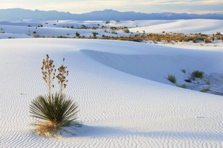 Śnieg na Saharze, spadło aż 40 cm białego puchu, ostatni raz takie zjawisko obserwowano 40 lat tem. Zdjęcie poglądowe.
