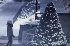 42-letnia pijana mieszkanka Wyszkowa zniszczyła szopkę bożonarodzeniową.