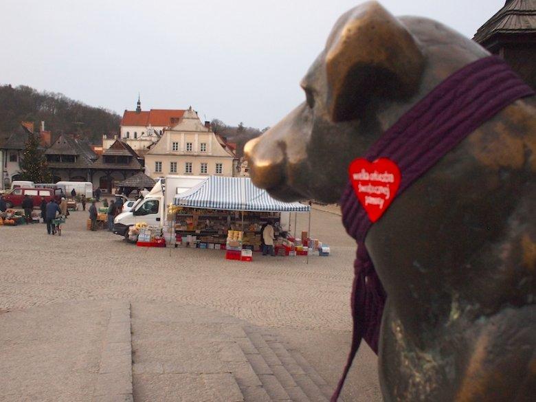 Szczęśliwy pies z rynku w Kazimierzu