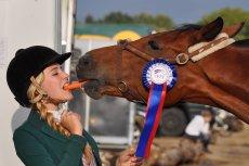 Warto pamiętać o jednym - nie każda kobieta jeżdżąca konno, to koniara. Koniara to stan umysłu