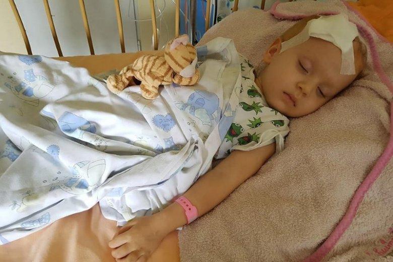 """W akcji """"Uwolnij ciucha"""" można wesprzeć chorą na nowotwór mózgu 3-letnią Marysię ze Świdnika"""