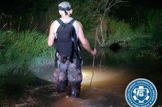 Poszukiwania pytona tygrysiego zostały zawieszone ze względu na trudne warunki meteorologiczne.