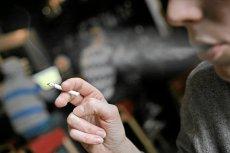 W maju z rynku znikną mentole. Forum Konsumentów ruszyło z akcją #ZakazMentoli.