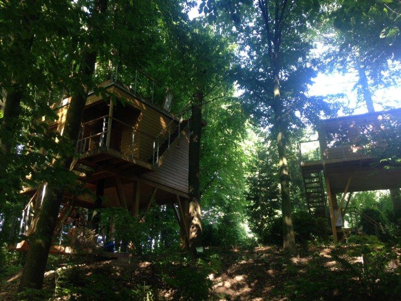 W Drzewach, Nałeczów