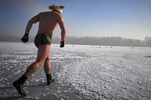 Fotografia poglądowa - przedstawia morsa korzystającego z uroków zimy na Jeziorze Pogorie w Dąbrowie Górniczej.
