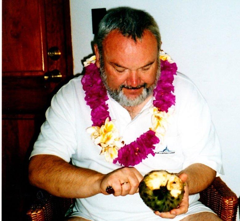 Obieram owoc chilimoya - specjalność Wyspy Wielkanocnej