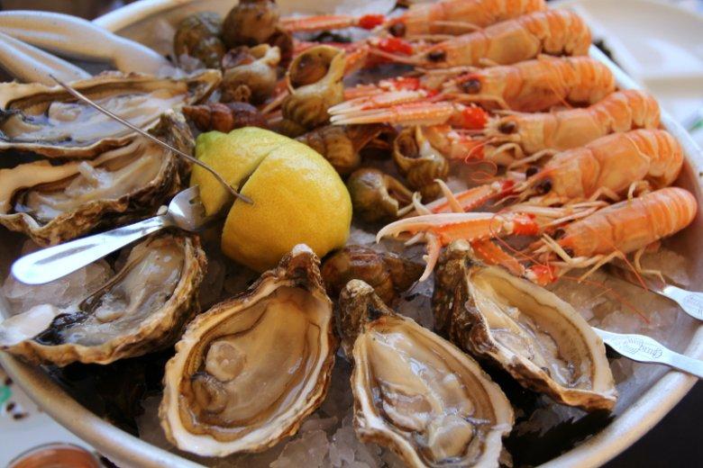 Ważnym elementem Krytyki Kulinarnej są podróże w poszukiwaniu nowych smaków.