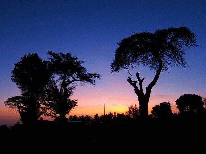 Zachodzące słońce na kenijskiej sawannie.