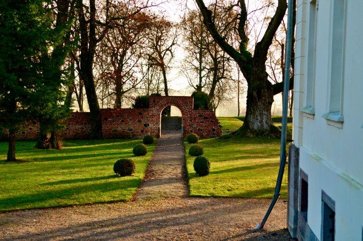 Widok z pałacu na ogród