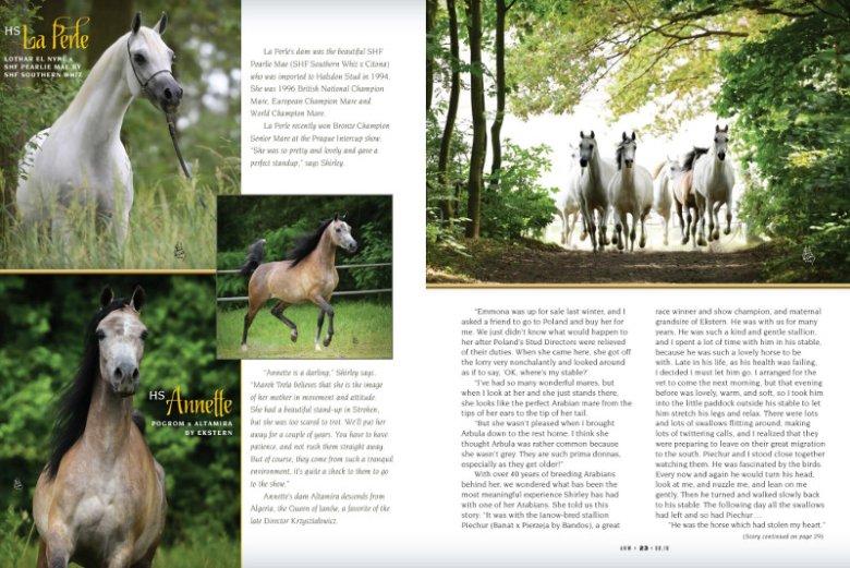 """Shirley Watts na łamach prestiżowego magazynu """"Arabian Horse World"""" wspomina, jak cudowna była Polska jeszcze kilka lat temu."""