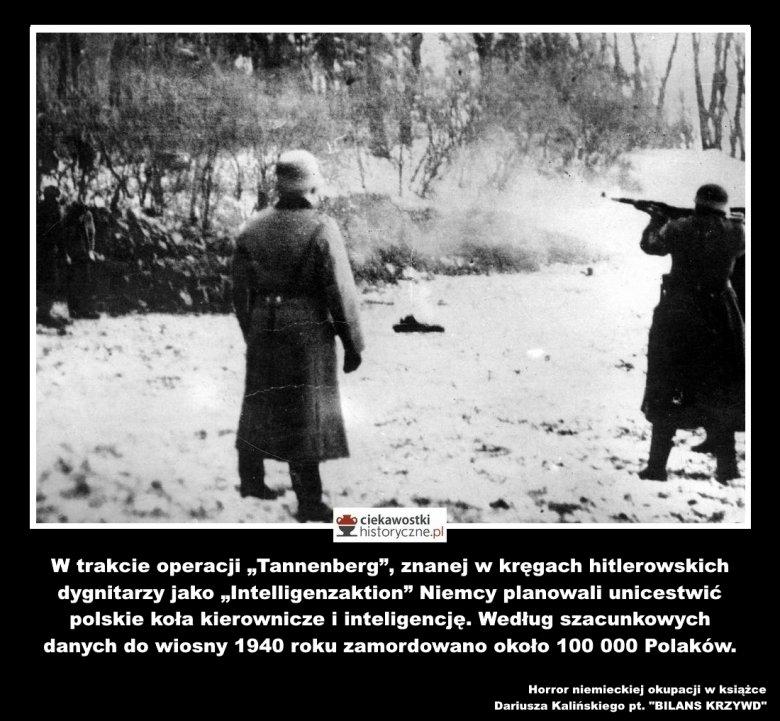 Do wiosny 1940 roku Niemcy zamordowali około 100 tys. Polaków.