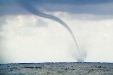Takie zjawiska od kilku dnie obserwują ratownicy WOPR i turyści wypoczywający nad Bałtykiem.