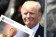 Donald Trump potrafi zdobyć uwagę internautów. Przeróbka z Rockym Balboa rozgrzała Twittera